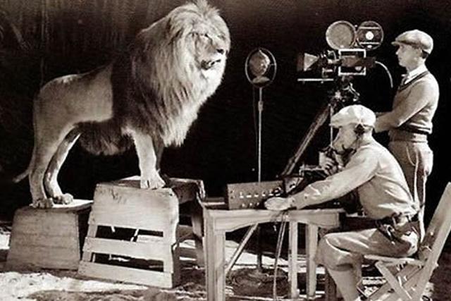 Qué hace un director?
